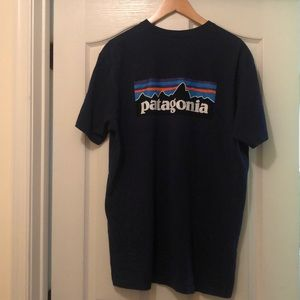 Patagonia Mens t-shirt
